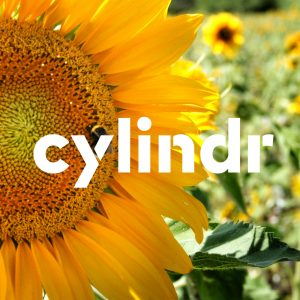 cylindr's logo with sun flower